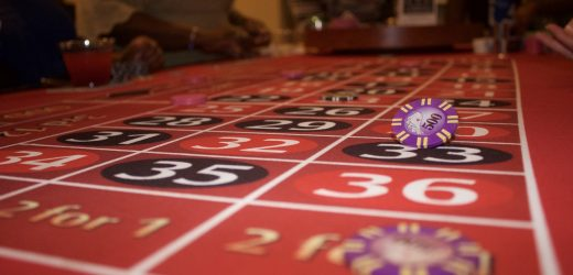 How a newcomer become successful while playing online gambling games?